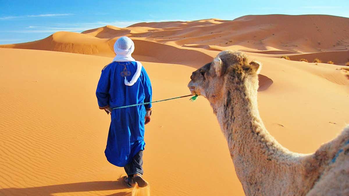 JOUR 3 :  Merzouga – Vallée de Drâa - Agdez - Ouarzazate